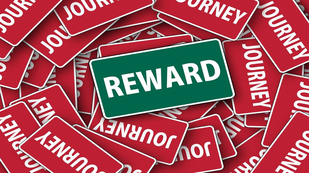 Rewards at every level